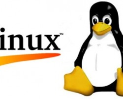 Over 20 Everyday Linux Commands