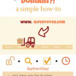 domain infographic (1)