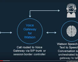 Web Hosting Customers Get Watson Customer Support