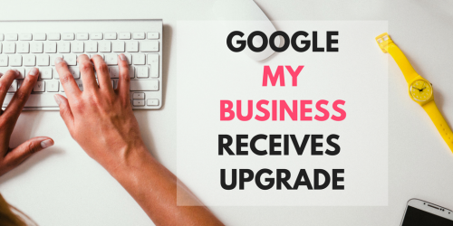 google, my business, restaurant, analytics, dashboard, search engine, google my business, business, seo